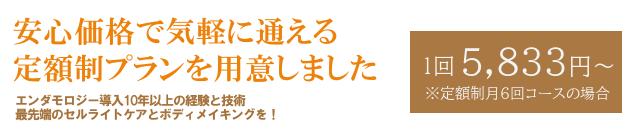 エンダモロジー定額制コース